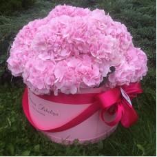 Розовые гортензии в цилиндре (XL) до 25 гортензий