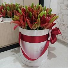Красные лилии в цилиндре (S) до 13 лилий