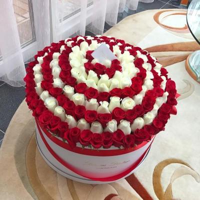 Белые и красные розы в цилиндре (XXL) от 215 роз