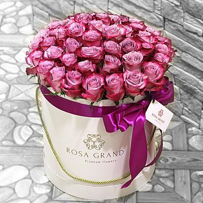 Розы Deep Purple в цилиндре (M) 43-47 роз.
