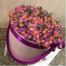 Тюльпаны пионовидные в цилиндре (XL) до 230 шт.
