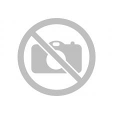 Белые и розовые пионы в цилиндре (XS) до 19 пионов